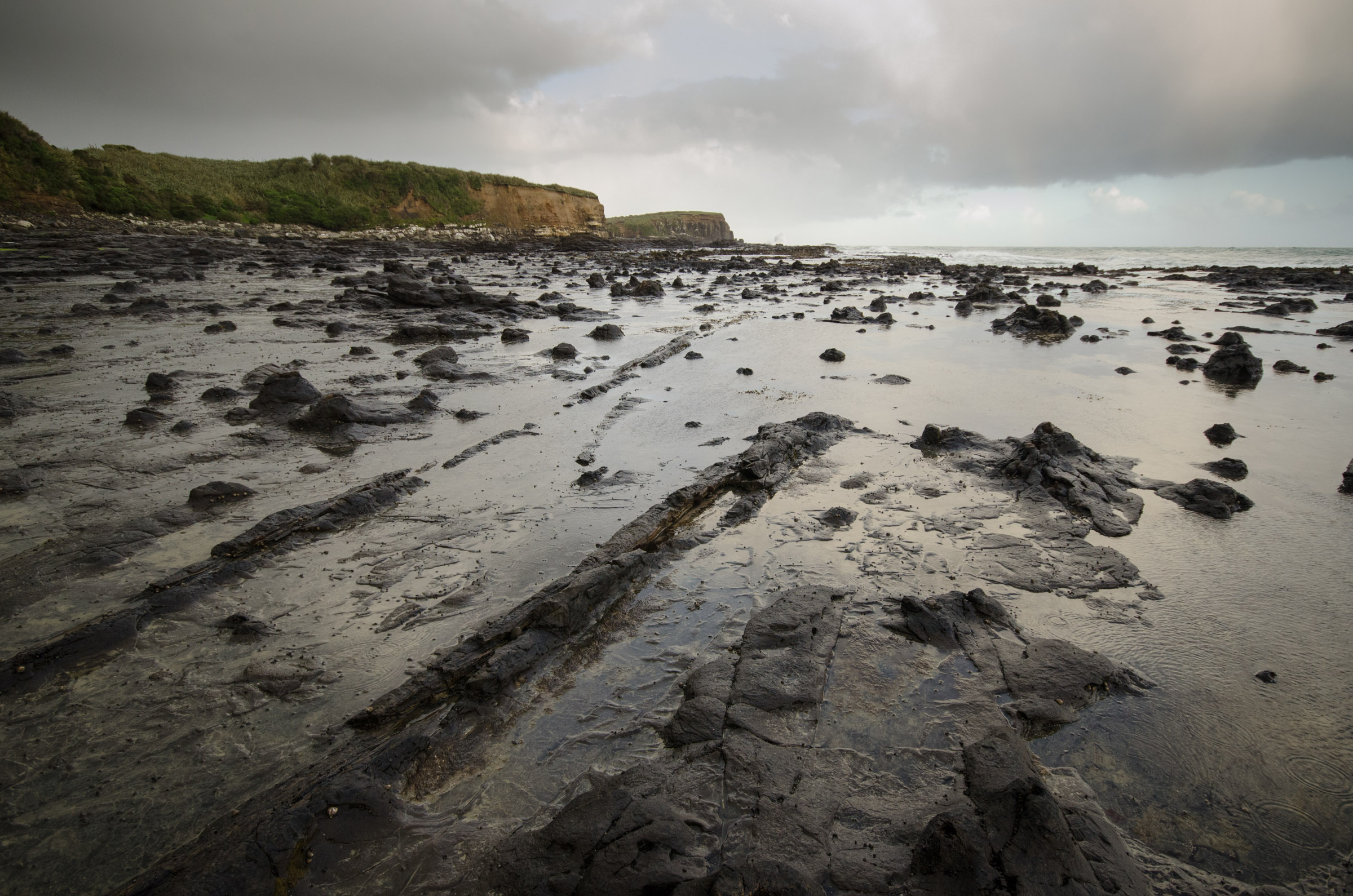 20131018_Catlins-_Timo_117